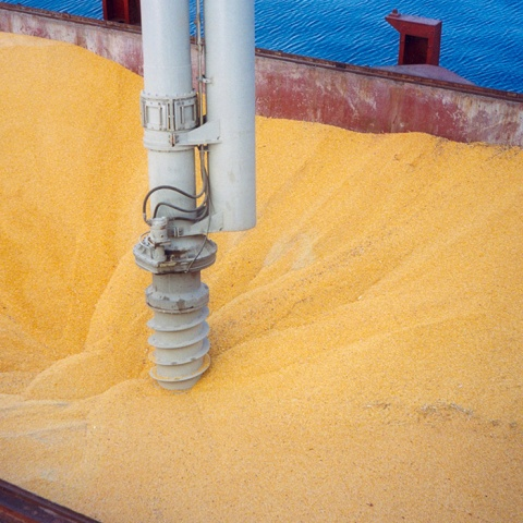 White Siwertell Ship unloader for grain, Germany