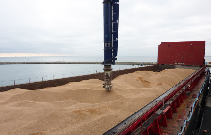 Siwertell multiple materials ship unloader unloading a ship with wood pellets